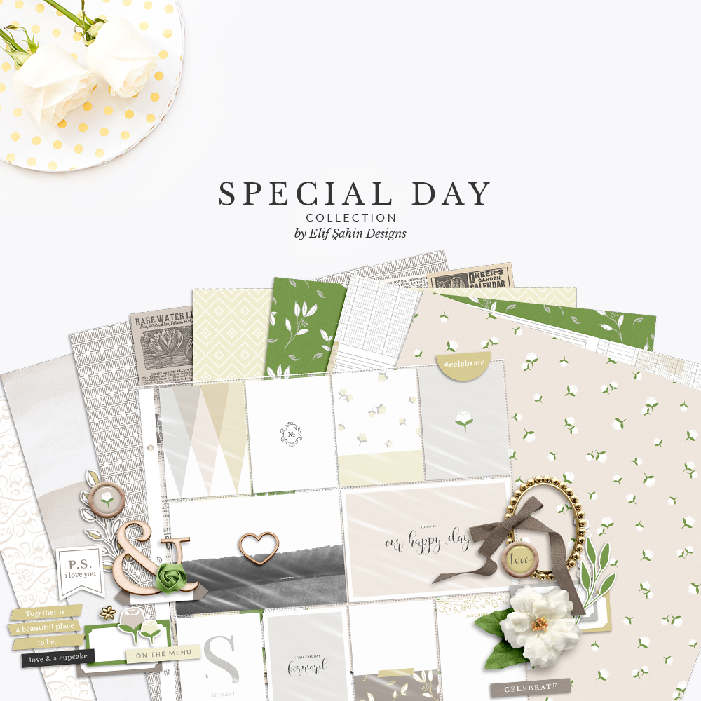 Special Day Digital Scrapbook Collection by Sahin Designs. Click to download the kit. Pin & save for later!