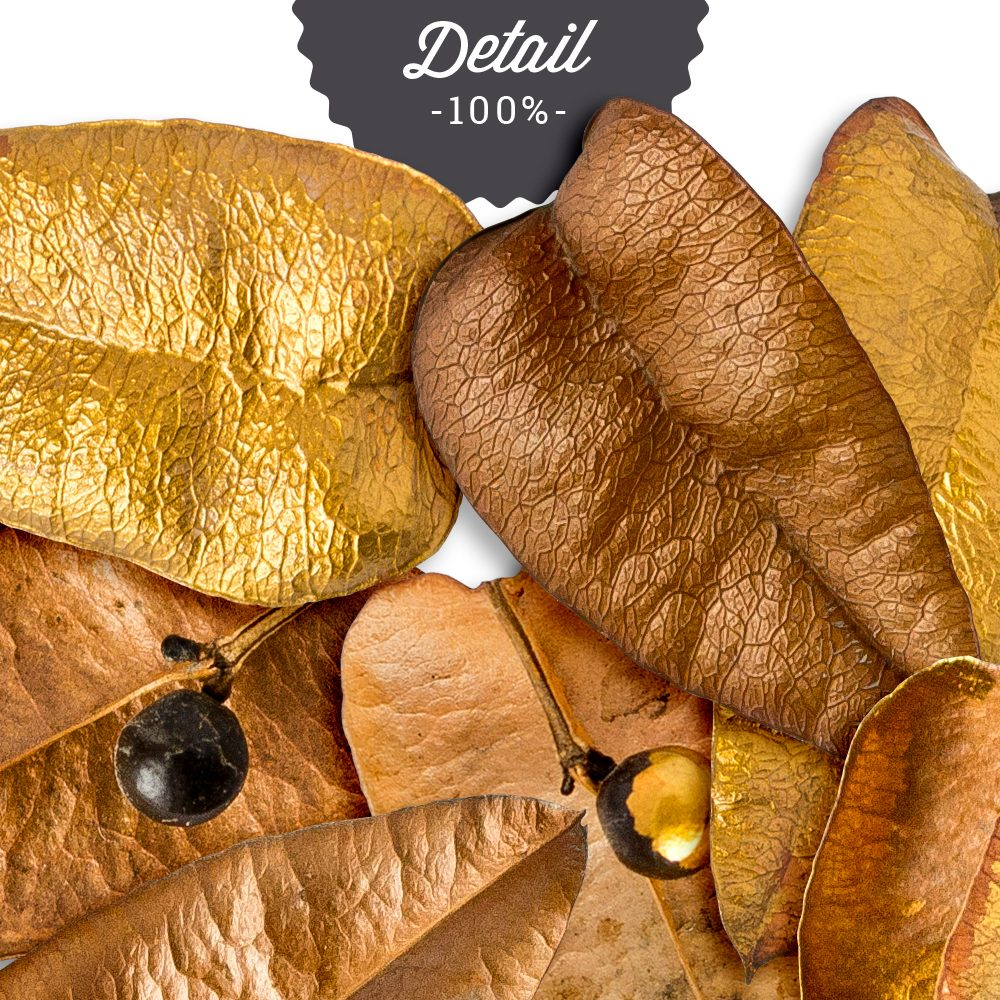 Design Pieces No.1 Gold Leaves by Sahin Designs - Commercial Use Digital Scrapbook Supplies