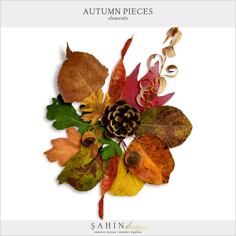 Autumn Pieces Digital Scrapbook Kit by Sahin Designs. Click to download the kit. Pin & save for later!