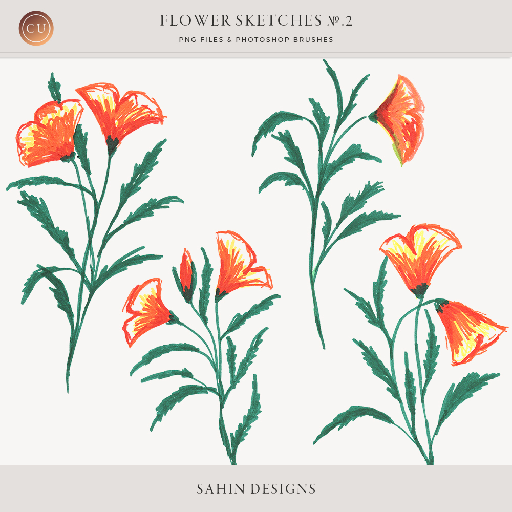 Flower Sketches No.2 by Sahin Designs - Commercial Use Digital Scrapbook Supplies