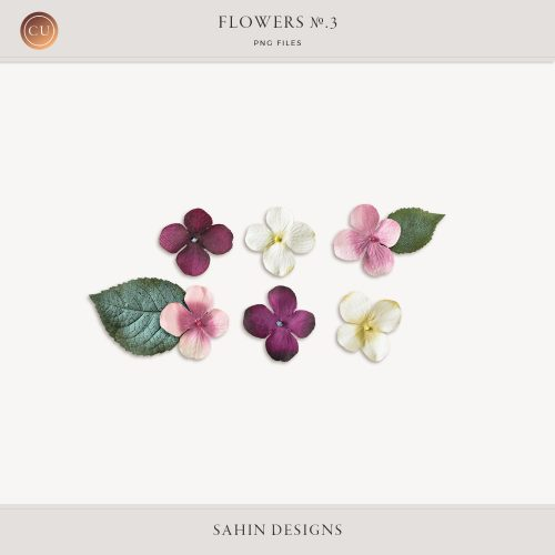 Flowers No.2 by Sahin Designs. Commercial Use Digital Scrapbook