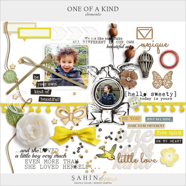 One Of A Kind Digital Scrapbook Elements by Sahin Designs. Click to download the kit. Pin & save for later!