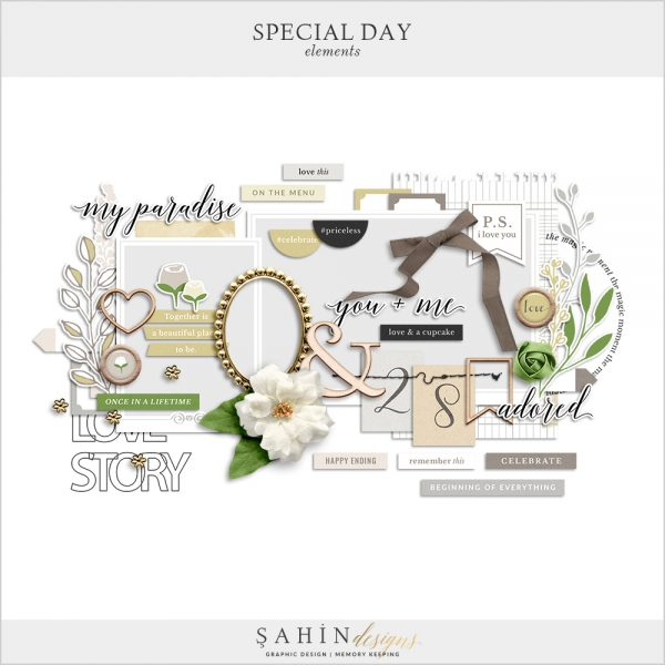 Special Day Digital Scrapbook Elements by Sahin Designs. Click to download the kit. Pin & save for later!
