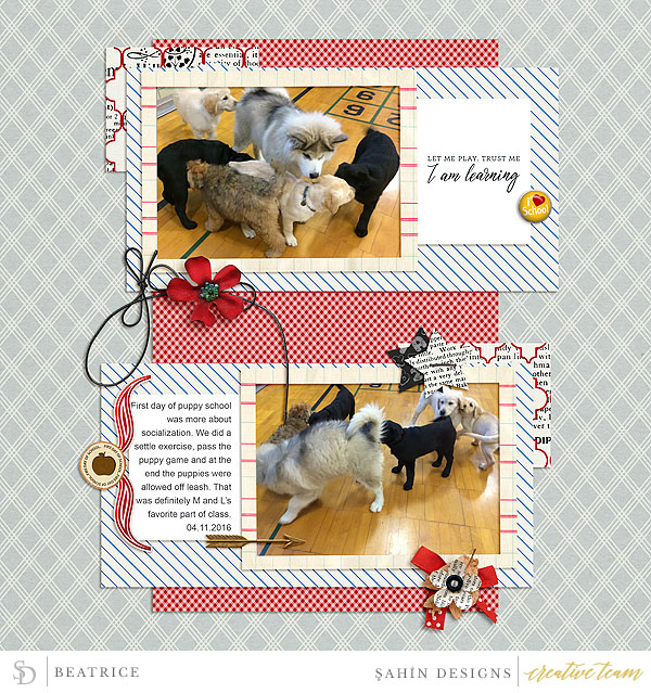 Digital scrapbook layout using Cool for School collection by Sahin Designs. Click thru to see more inspirations. Pin & save for later!