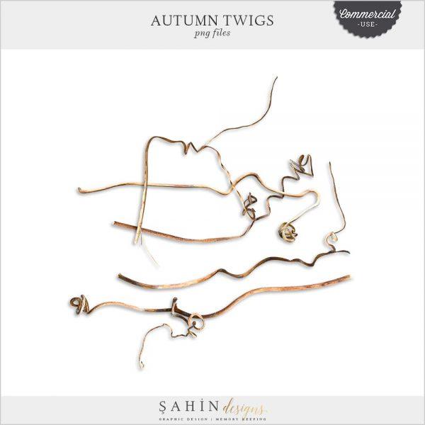 Extracted Autumn Twigs | CU Digital Scrapbook | Sahin Designs