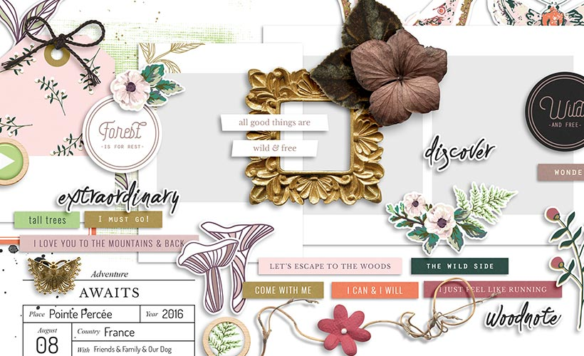 Shop Update | Woodnote Collection & Free Sampler