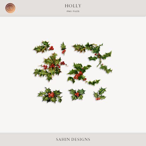 Extracted Vintage Holly Images - CU Digital Scrapbook - Sahin Designs