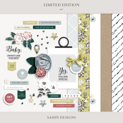 Limited Edition Digital Scrapbook Kit - Sahin Designs