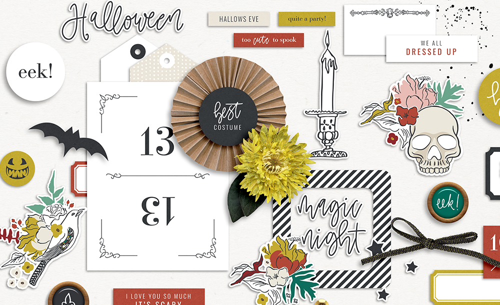 Shop Update | All Dressed Up Collection + DSD Deals