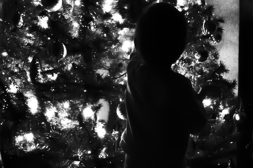 Photography ideas for capturing December - Sahin Designs