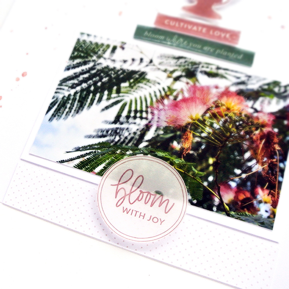 DIY shrink plastic embellishments for scrapbook projects - Sahin Designs