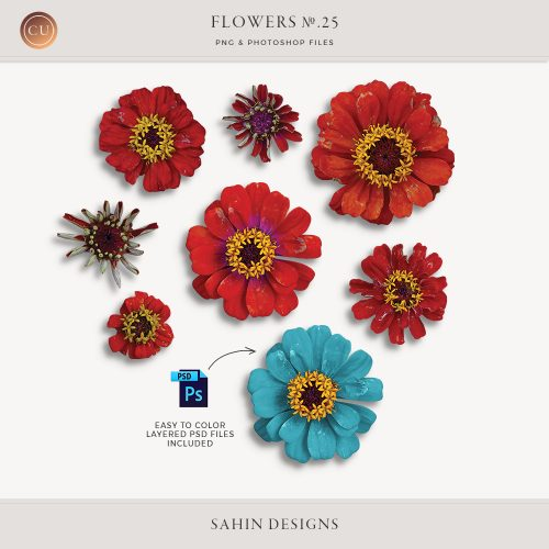 Extracted red daisy flowers - Sahin Designs - CU Digital Scrapbook