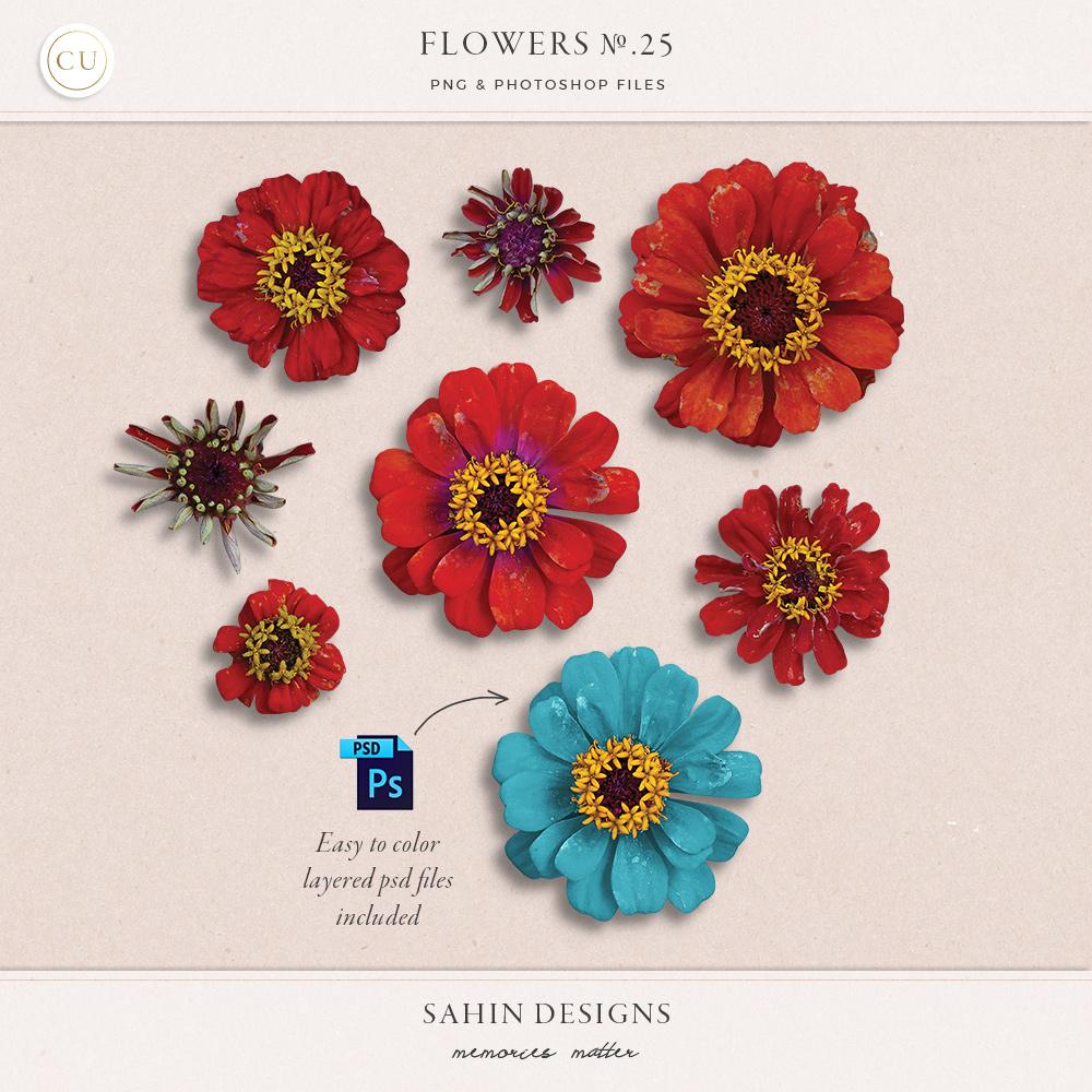 Extracted red daisy flowers sahin designs cu digital scrapbook izmirmasajfo