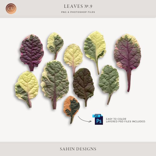 Extracted ajuga leaves - Sahin Designs - CU Digital Scrapbook