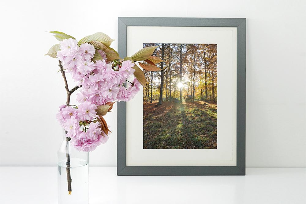 5 photos I'm taking this autumn - Sahin Designs