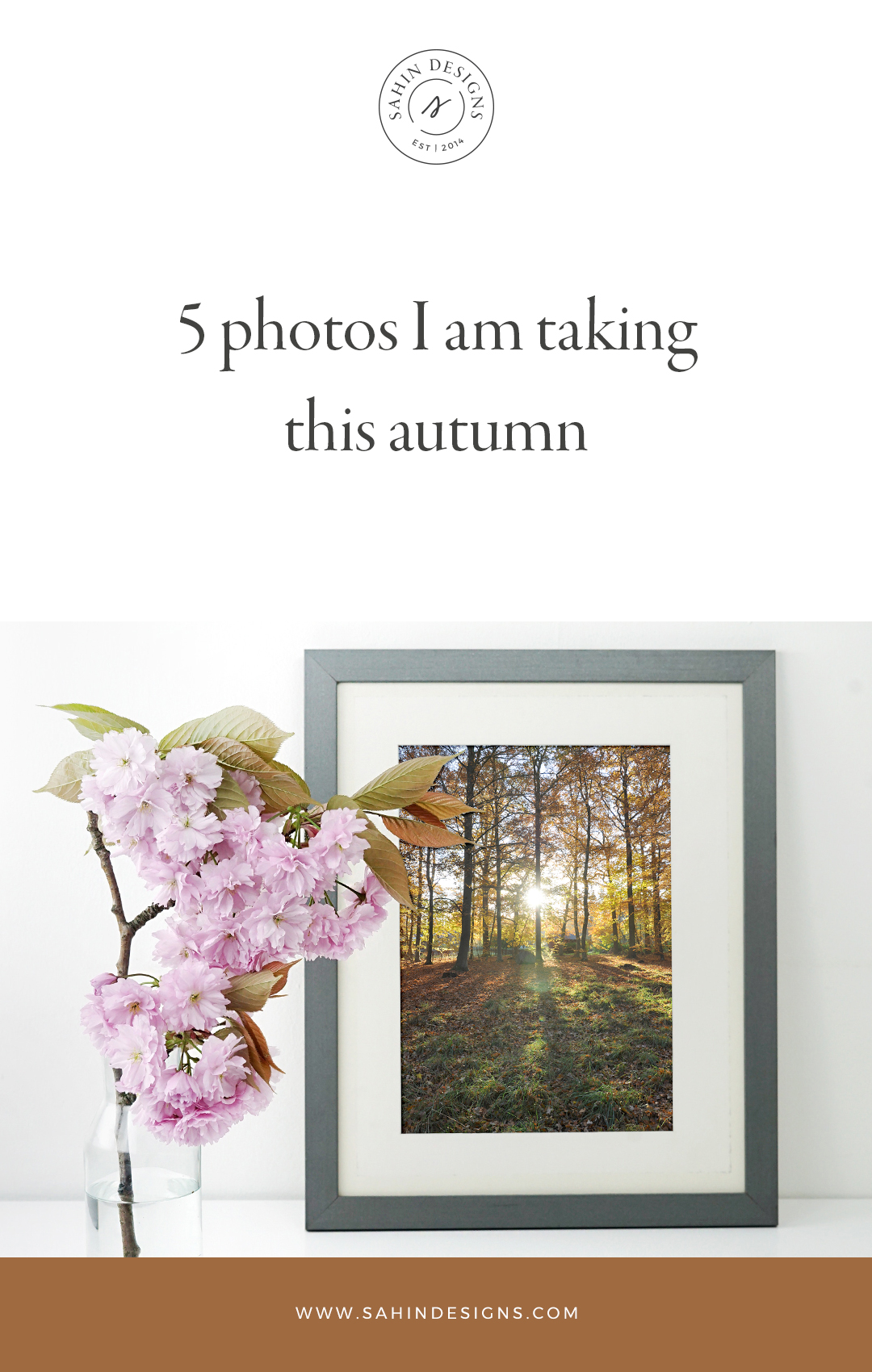 5 photos I'm taking this autumn - Sahin Designs