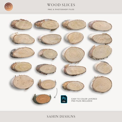 Extracted Wood Slices - Sahin Designs - CU Digital Scrapbook
