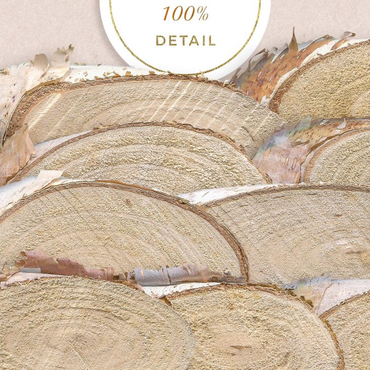 Extracted Wood Slices - Sahin Designs - CU Digital Scrapbook