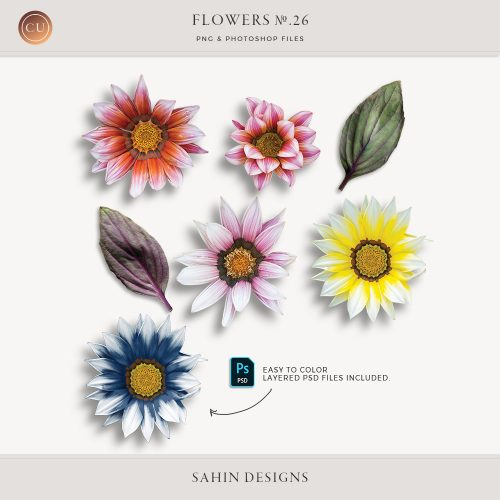 Extracted gazania flowers - Sahin Designs - CU Digital Scrapbook