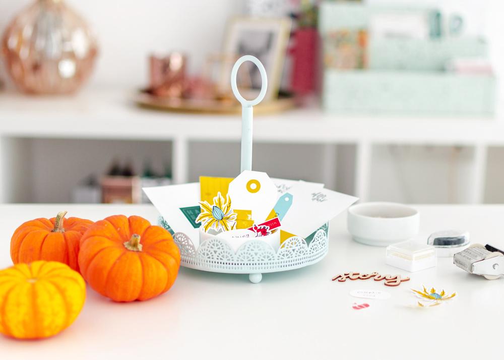 Shop Update | Pumpkin Song collection + DSD deals