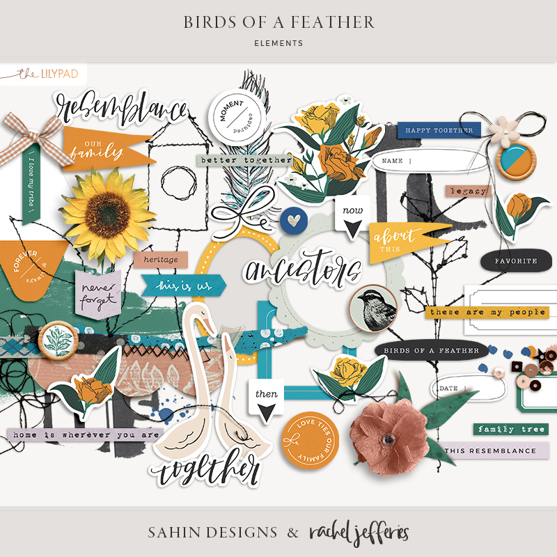 Birds of a Feather Digital Scrapbook Elements - Sahin Designs & Rachel Jefferies