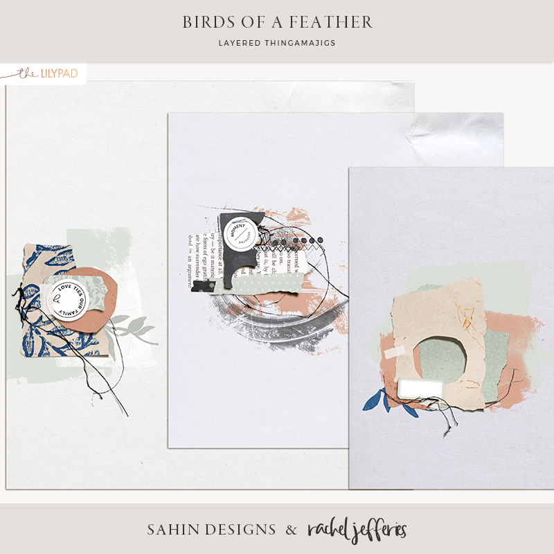 Birds of a Feather Digital Scrapbook Layered Papers - Sahin Designs & Rachel Jefferies