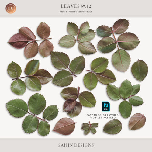 Extracted Fresh Rose Leaves - Sahin Designs - CU Digital Scrapbook