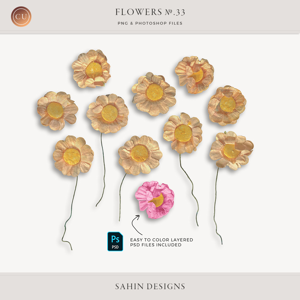 Extracted paper daisy flowers - Sahin Designs - CU Digital Scrapbook