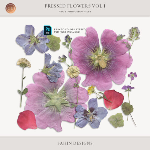 Extracted Pressed Flowers & Foliage - Sahin Designs - CU Digital Scrapbook
