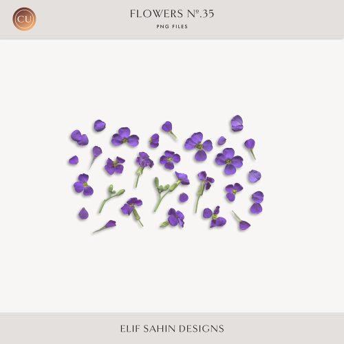 Extracted Petite Purple Flowers - Sahin Designs - CU Digital Scrapbook